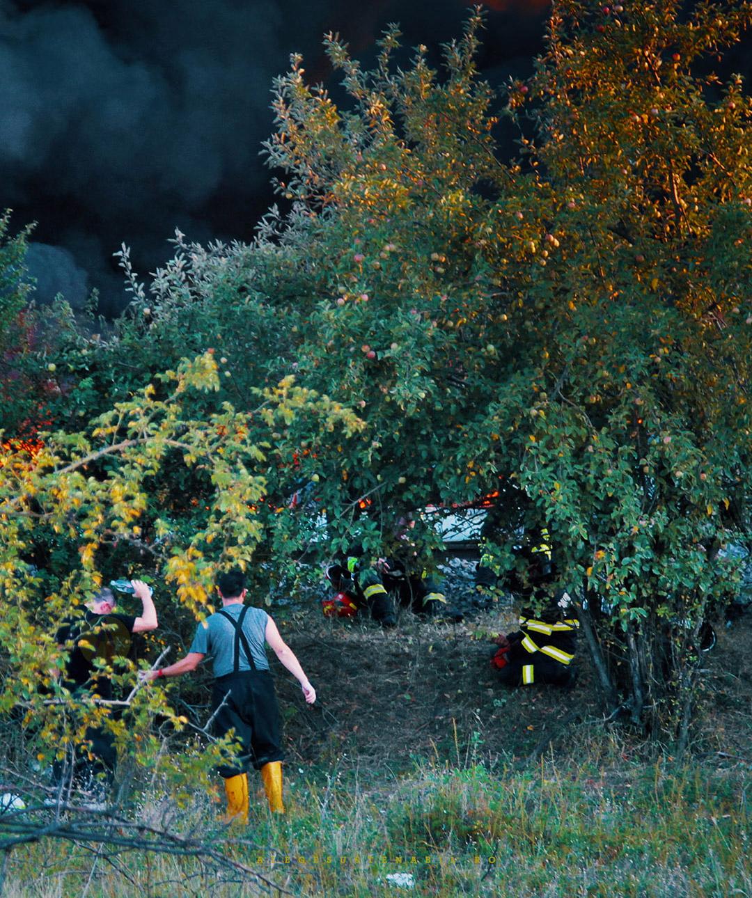 Pompierii se odihnesc dupa interventia de la Fabrica de Orez Atifco din Bragadiru mancand mere din copacii aflati in apropiere